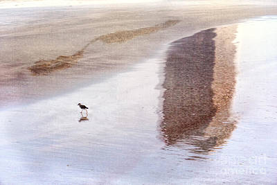 Digital Art - Early Bird Stroll by Georgianne Giese