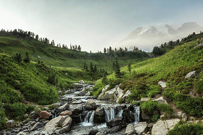 Photograph - Early Evening Light On Mount Rainier Above Edith Creek by Belinda Greb