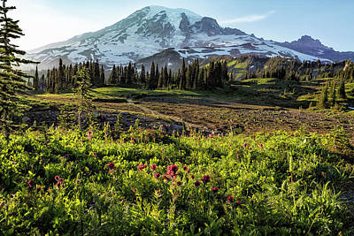 Photograph - Early Evening On Mount Rainier by Belinda Greb
