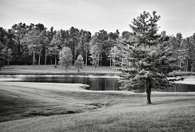 Photograph - Tranquility 2 - B/w by Greg Jackson