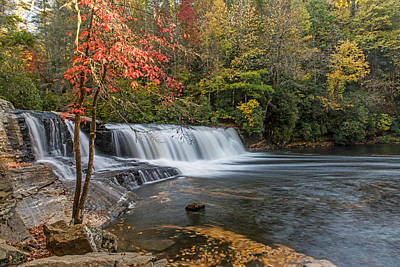 Photograph - Early Fall In Dupont State Forest by Willie Harper