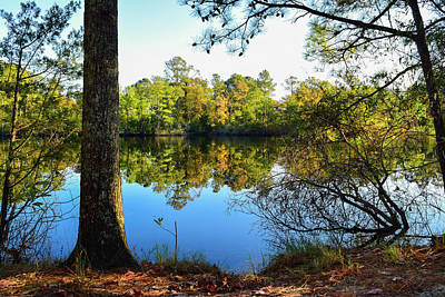 Photograph - Early Fall Reflections by Nicole Lewis