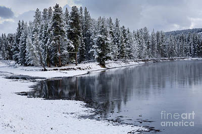 Snowstorm Photograph - Early Fall Storm In Yellowstone by Sandra Bronstein