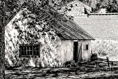 Photograph - Early Farm Cottage by Marcia Lee Jones