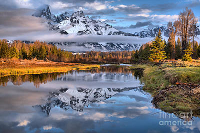 Photograph - Early May At Schwabacher Landing by Adam Jewell