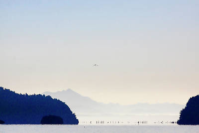 Early Morning Ala Spit Whidbey Island Art Print