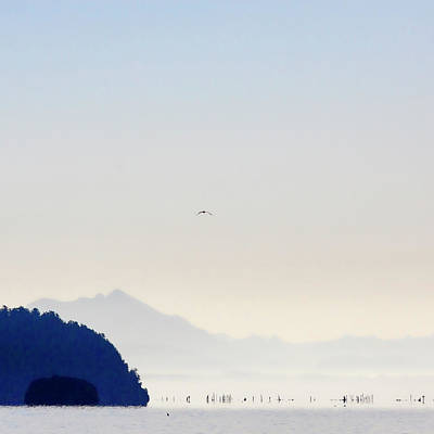 Photograph - Early Morning Ala Spit Whidbey Island Square Format by Carol Leigh