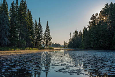 Photograph - Early Morning Algonquin by Ian Sempowski