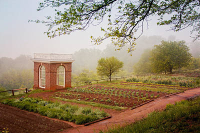 Politicians Royalty-Free and Rights-Managed Images - Early Morning at Monticello by Heidi Hermes