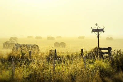 Photograph - Early Morning At The Farm by Jeremy Lavender Photography
