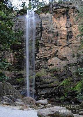 Photograph - Early Morning At Toccoa Falls, Ga by Barbie Corbett-Newmin