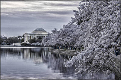 Photograph - Early Morning Blossoms by Erika Fawcett