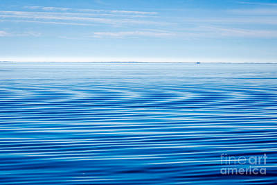 Photograph - Early Morning Blues by Debra Martz