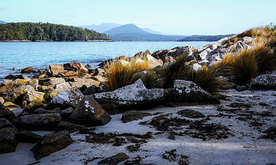Photograph - Early Morning - Fishers Point, Tasmania by Lexa Harpell