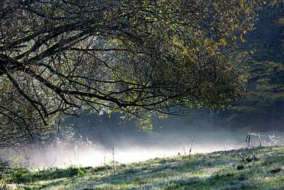 Photograph - Early Morning Fog by Silke Brubaker