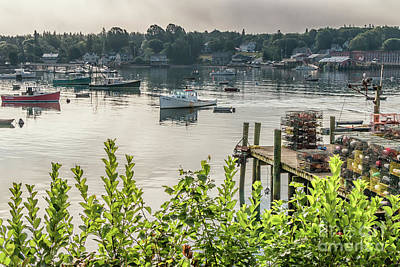 Photograph - Early Morning In Maine by Elizabeth Dow