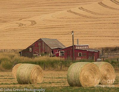 Photograph - Early Morning In The Palouse by John Greco