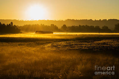 Photograph - Early Morning In The Valley by MaryJane Armstrong