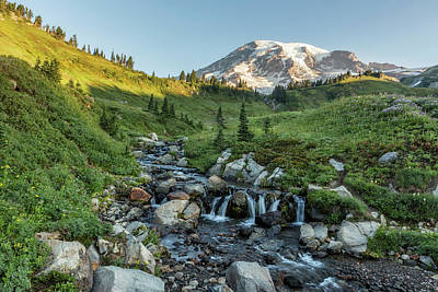 Photograph - Early Morning Light On Mt Rainier Above Edith Creek by Belinda Greb