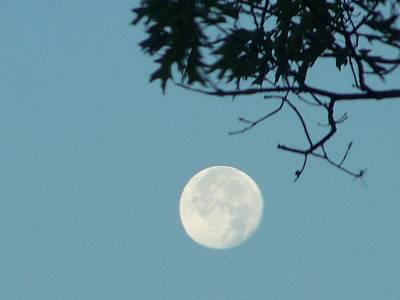Early Morning Moon Art Print