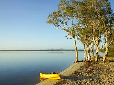 Photograph - Early Morning Paddle On Lake Cootharaba by Keiran Lusk