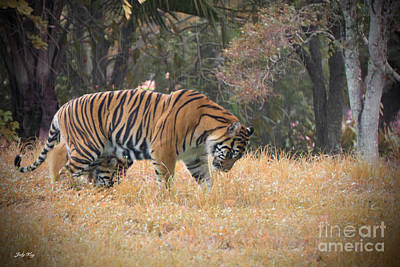 Bengal Tiger Painting -  Early Morning Reign by Judy Kay