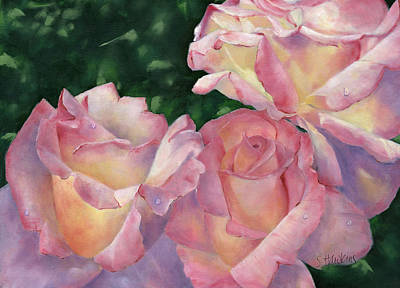 Peace Rose Painting - Early Morning Roses by Sheryl Heatherly Hawkins