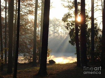 Early Morning Sun Rays On The Lake Print by Cindy Hudson