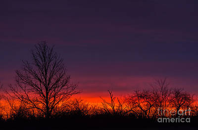 Photograph - Early Morning Sunrise by Cheryl Baxter