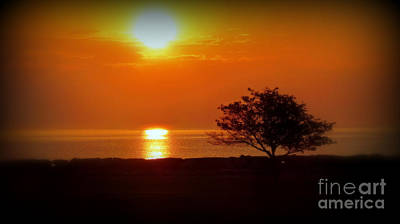 Photograph - Early Morning Sunrise On A Silhouetted Beach by Kay Novy