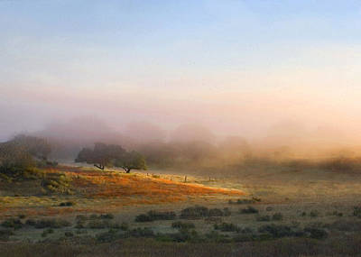 Photograph - Early Morning Sunrise by Sharon Foster