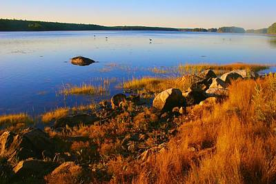 Photograph - Penobscot Bay In Early Morning by Polly Castor