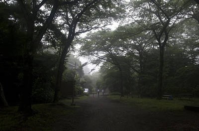Photograph - Early Morning Walk by Masami Iida