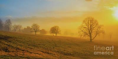 Foggy Morning Digital Art - Early Morning Winter Fog by Randy Steele