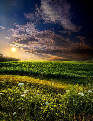 Fall Leaves Photograph - Early Rise by Phil Koch