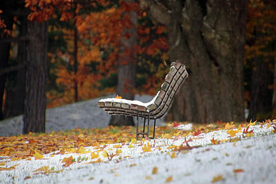 Photograph - Early Snow by Gerald Salamone
