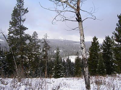Photograph - Early Snows In The Rockies by DeeLon Merritt