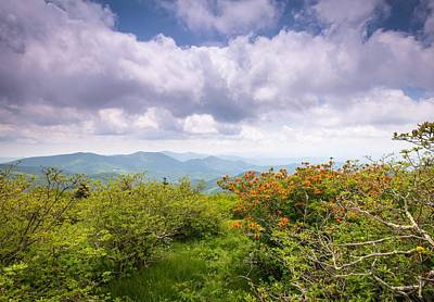 Photograph - Early Spring at Roan by L A Patterson