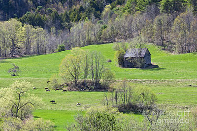 Photograph - Early Spring Countryside by Alan L Graham