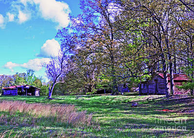 Photograph - Early Spring In Fort Mill No. 2 by Lydia Holly
