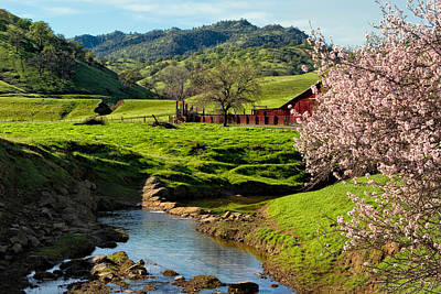 Ranch Life Photograph - Early Spring In The Valley by Kathleen Bishop