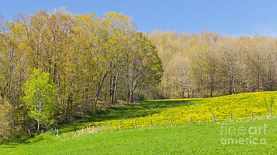 Photograph - Early Spring Pastures by Alan L Graham