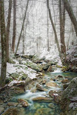 Photograph - Early Spring Snow by Bill Wakeley