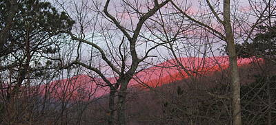 Photograph - Early Spring Sunrise by Tammy Schneider
