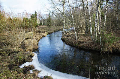 Photograph - Early Springtime By A Small Creek by Kennerth and Birgitta Kullman