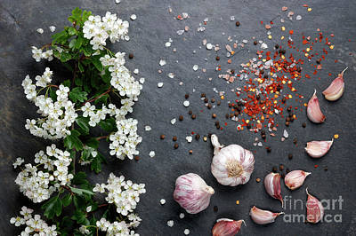 Photograph - Early Summer White  Flower Blossoms With Pink Garlic by Nicholas Burningham