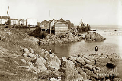 Photograph - Early View Of East Side Of Fisherman's Wharf Monterey Circa 1900 by California Views Mr Pat Hathaway Archives