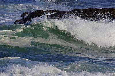 Photograph - Early Waves by Adria Trail