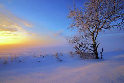 Photograph - Early Winter Morning by Dan Jurak