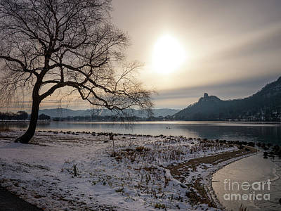 Photograph - Early Winter Sugarloaf With Tree by Kari Yearous